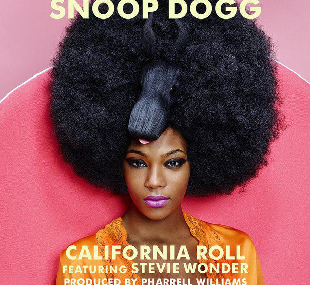 Music: Snoop Dogg - California Roll @SnoopDogg #californiaroll