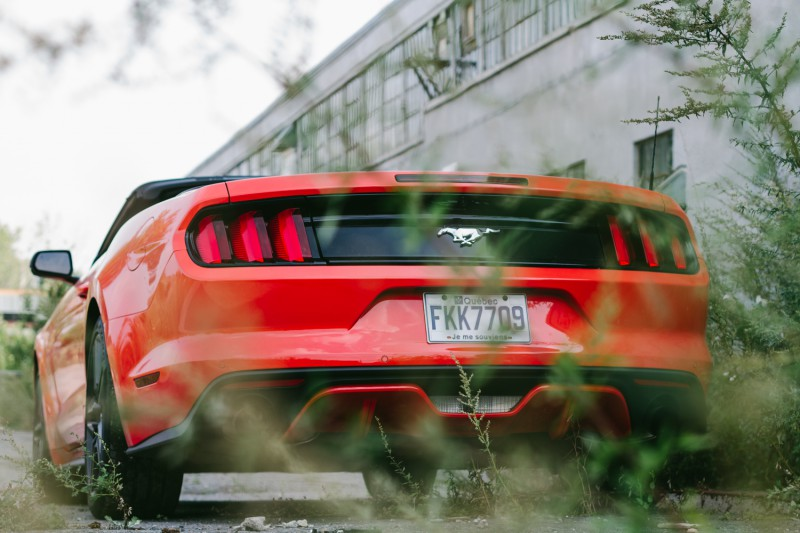 JC-2015 FORD MUSTANG_-7